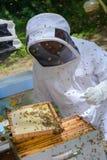 Μελισσοκόμος στο μελισσουργείο Στοκ Φωτογραφίες