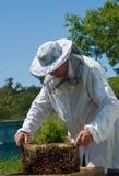 μελισσοκόμος 41 Στοκ φωτογραφία με δικαίωμα ελεύθερης χρήσης