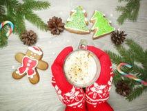 Μελόψωμο και καφές μπισκότων Χριστουγέννων στα κόκκινα γάντια χεριών Στοκ φωτογραφίες με δικαίωμα ελεύθερης χρήσης