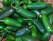 μεξικάνικα πιπέρια jalapeno τσίλι Στοκ Φωτογραφίες