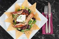 Μεξικάνικα nachos με τις ψημένες στη σχάρα λωρίδες κοτόπουλου Στοκ φωτογραφία με δικαίωμα ελεύθερης χρήσης