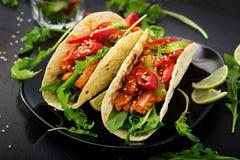 Μεξικάνικα tacos με τη λωρίδα κοτόπουλου στη σάλτσα ντοματών και το salsa Στοκ φωτογραφία με δικαίωμα ελεύθερης χρήσης