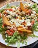 Μεξικάνικη σαλάτα μπριζολών Στοκ Εικόνα