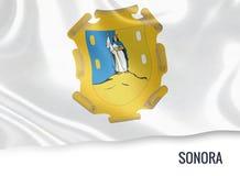 Μεξικάνικη σημαία κρατικού Sonora Στοκ Εικόνες