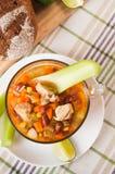 Μεξικάνικη σούπα με το κοτόπουλο, το σέλινο και τα λαχανικά Στοκ εικόνα με δικαίωμα ελεύθερης χρήσης
