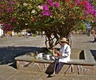 Μεξικάνικος ηληκιωμένος με το δέντρο bougainvillea Στοκ Εικόνα