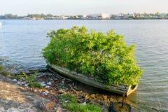 Μεξικάνικο αλιευτικό σκάφος Στοκ εικόνα με δικαίωμα ελεύθερης χρήσης