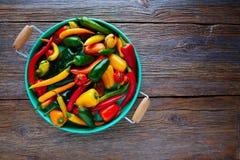 Μεξικάνικο καυτό ζωηρόχρωμο μίγμα πιπεριών τσίλι Στοκ εικόνα με δικαίωμα ελεύθερης χρήσης