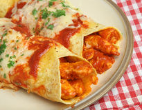Μεξικάνικο κοτόπουλο Enchiladas Στοκ φωτογραφία με δικαίωμα ελεύθερης χρήσης