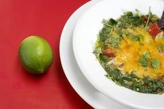 μεξικάνικο tortilla σούπας κινηματογραφήσεων σε πρώτο πλάνο Στοκ Φωτογραφία