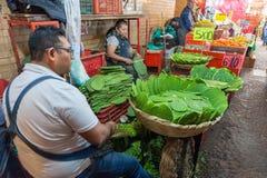 ΜΕΞΙΚΟ - 19 ΟΚΤΩΒΡΊΟΥ 2017: Αγορά του Μεξικού με Nopales στην πώληση Στοκ Εικόνα