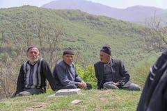 Μερικά αγροτικά άτομα κάθονται στη χλόη Τα δέντρα, τα βουνά και το δάσο στοκ εικόνα