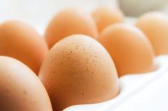 μερικά αυγά κοτόπουλου Στοκ φωτογραφία με δικαίωμα ελεύθερης χρήσης
