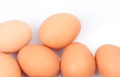 Μερικά αυγά Στοκ Εικόνα