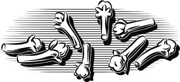 Μερικά διεσπαρμένα γαρίφαλα ελεύθερη απεικόνιση δικαιώματος