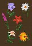 Μερικά διάφορα διαφορετικά διανυσματικά λουλούδια απεικόνιση αποθεμάτων