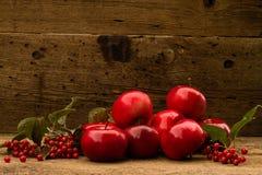 Μερικά μήλα σε ένα ξύλινο υπόβαθρο Στοκ εικόνα με δικαίωμα ελεύθερης χρήσης