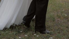 Μερικά newlyweds που περπατούν στο πάρκο Είδος ποδιών απόθεμα βίντεο
