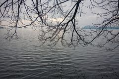 Μερικοί γυμνοί κλάδοι των δέντρων επεκτείνονται προς τα ήρεμα νερά του τ Στοκ Εικόνες