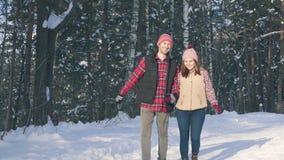 Μερικοί χαμογελώντας νέοι στα χειμερινά ενδύματα σε ένα χιονώδες δάσος μια ηλιόλουστη ημέρα strolling μέσω του πάρκου φιλμ μικρού μήκους