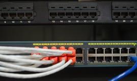 Μερικώς άποψη του διακόπτη δικτύων του τοπικού LAN με τα καλώδια Ethernet plugg Στοκ Εικόνες