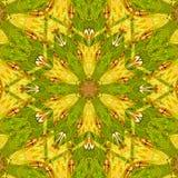 Μεσαιωνική διακόσμηση, διακοσμητική ασπίδα κίτρινος και πράσινος Στοκ Φωτογραφίες