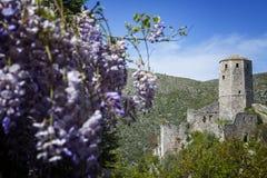 Μεσαιωνική πόλη Pocitelj, της Βοσνίας & της Ερζεγοβίνης Στοκ φωτογραφία με δικαίωμα ελεύθερης χρήσης