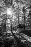 Μεσαιωνικοί άνδρας και γυναίκα Στοκ φωτογραφίες με δικαίωμα ελεύθερης χρήσης