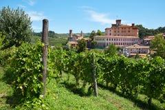 Μεσαιωνικοί κάστρο και αμπελώνες Barolo Piedmont, Ιταλία στοκ εικόνες με δικαίωμα ελεύθερης χρήσης