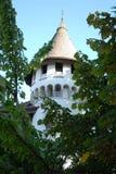 Μεσαιωνικός πύργος με το πλαίσιο φύλλων στο Treviso στο Βένετο (Ιταλία) στοκ εικόνα