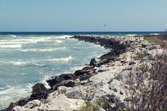 Μεσημβρία τοπίων παραλίας με τους όμορφους βράχους και τους γλάρους κυμάτων στοκ εικόνες με δικαίωμα ελεύθερης χρήσης