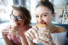 Μεσημεριανό γεύμα χάμπουργκερ Στοκ Εικόνες