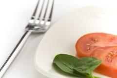 Μεσημεριανό γεύμα Στοκ Εικόνες