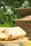 μεσημεριανό γεύμα picknick Στοκ φωτογραφία με δικαίωμα ελεύθερης χρήσης