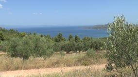 Μεσογειακός κήπος, κινηματογράφηση σε πρώτο πλάνο ο κλάδος φιλμ μικρού μήκους
