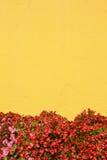 Μεσογειακός τοίχος ύφους Στοκ εικόνες με δικαίωμα ελεύθερης χρήσης