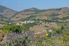 Μεσογειακό χωριό της Roussillon τοπίων της Γαλλίας Στοκ εικόνες με δικαίωμα ελεύθερης χρήσης