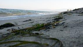 Μεσόγειος, εγκαταστάσεις, φύση και το περιβάλλον απόθεμα βίντεο