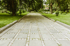 Μετάβαση διάβασης πεζών Στοκ Εικόνες