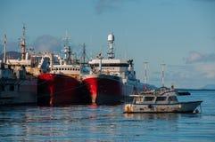 Μετάβαση σε Antartica; Πάρτε εν πλω! Αργεντινή Στοκ Εικόνα
