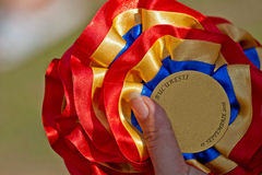 μετάλλια σκυλιών Στοκ φωτογραφία με δικαίωμα ελεύθερης χρήσης