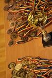 Μετάλλια Jitsu Jiu και τρόπαιο στο ρουμανικό πρωτάθλημα, νεώτεροι, το Μάιο του 2018 στοκ φωτογραφία με δικαίωμα ελεύθερης χρήσης