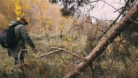 Μετά από ένα αγόρι που περπατά σε ένα δάσος, πυροβολισμός αναρτήρων απόθεμα βίντεο