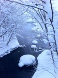 Μετά από τη βαριά χιονοθύελλα, ποταμός παγώματος στο πάρκο Στοκ Φωτογραφία