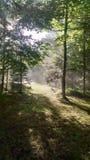 Μετά από τη θύελλα Στοκ φωτογραφία με δικαίωμα ελεύθερης χρήσης