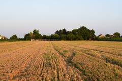 Μετά από τη συγκομιδή, Vojvodina, Σερβία στοκ φωτογραφία με δικαίωμα ελεύθερης χρήσης