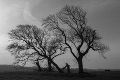Μετά από το χειμώνα, δυτικά της Ιρλανδίας Στοκ Εικόνες