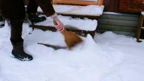 Μετά από χιονοπτώσεις απόθεμα βίντεο