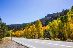 Μεταβαλλόμενα χρώματα των δέντρων το φθινόπωρο κατά μήκος της εθνικής οδού βουνών στοκ φωτογραφία με δικαίωμα ελεύθερης χρήσης