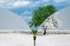 Μεταβαλλόμενες εποχές φερμουάρ Στοκ εικόνα με δικαίωμα ελεύθερης χρήσης